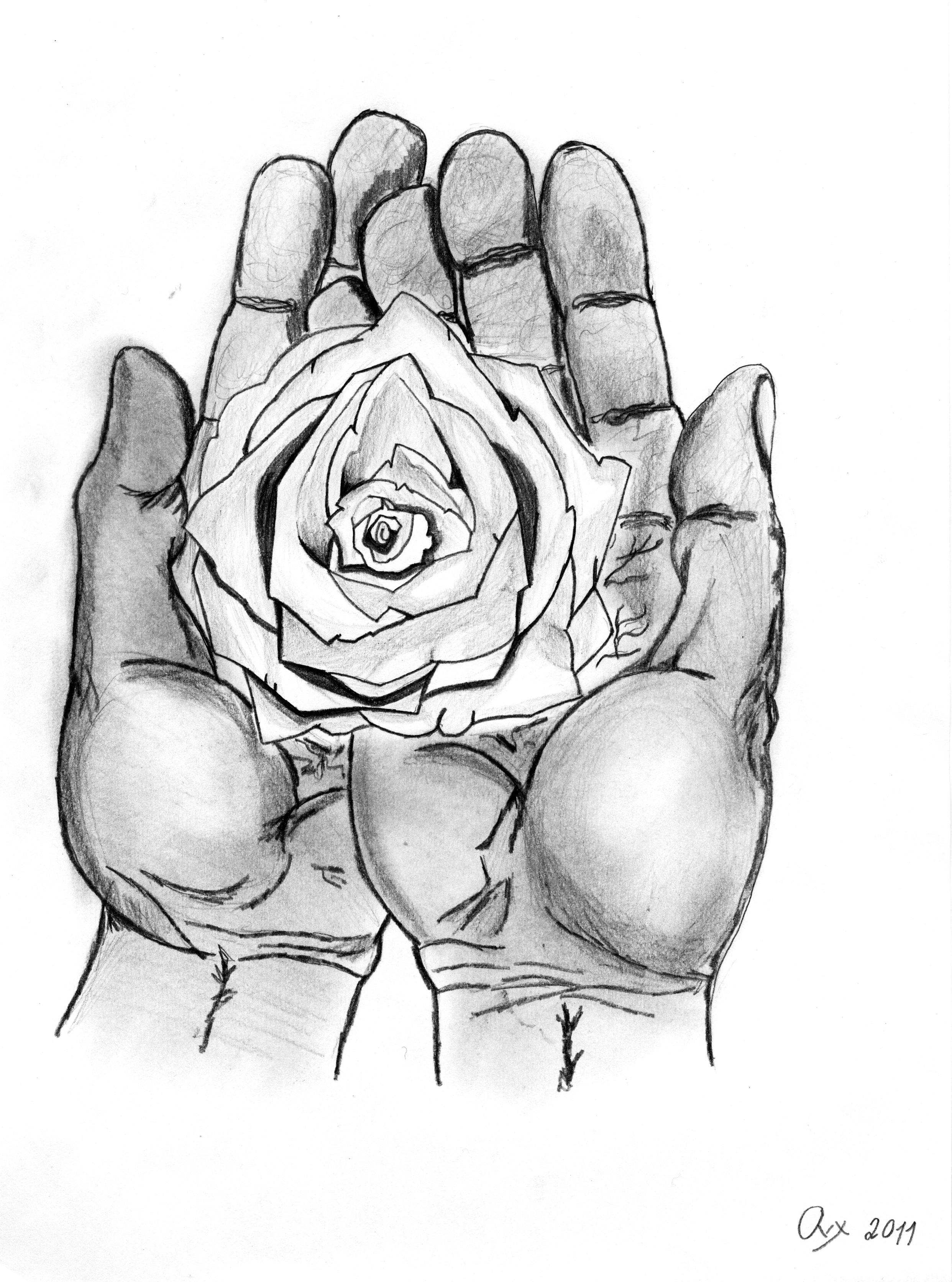 Drawn rose hand holding Something Pictures Holding Draw Hand