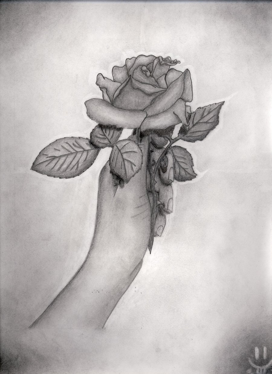 Drawn rose hand holding By Rose by Midnightmares DeviantArt