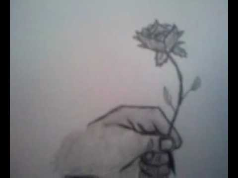 Drawn rose hand holding A holding draw how to