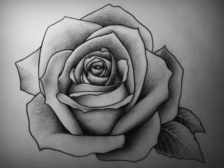 Drawn rose hard Rose on 25+ @deviantART Rose