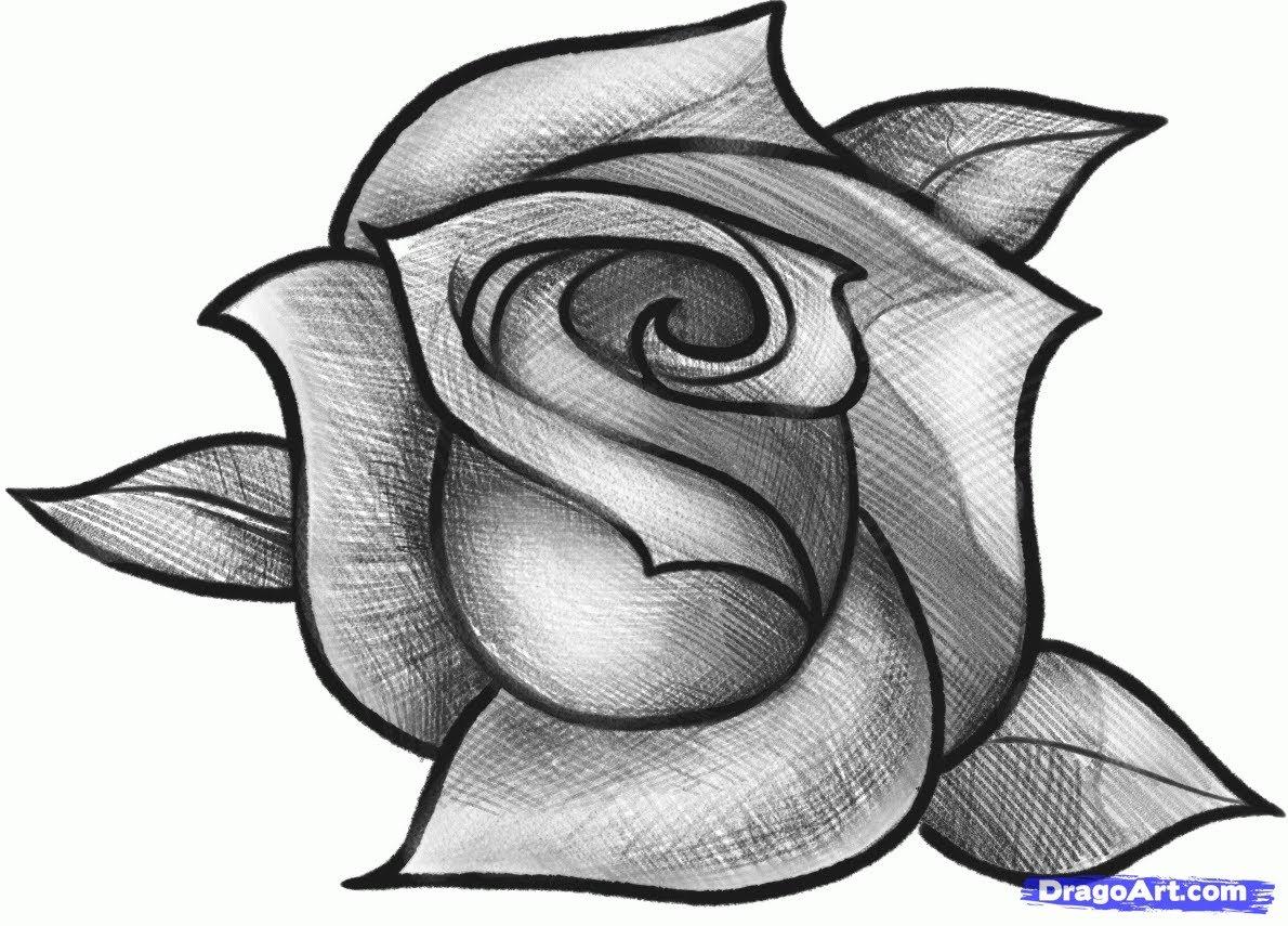 Drawn rose hard How At Beautiful Drawn Roses
