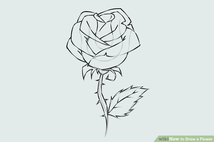 Drawn rose leaves WikiHow 9 Step Draw Image