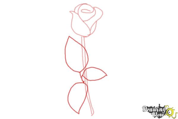 Drawn rose leaves Draw by Step 5 How