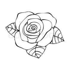 Drawn rose line art In style  illustration' vector