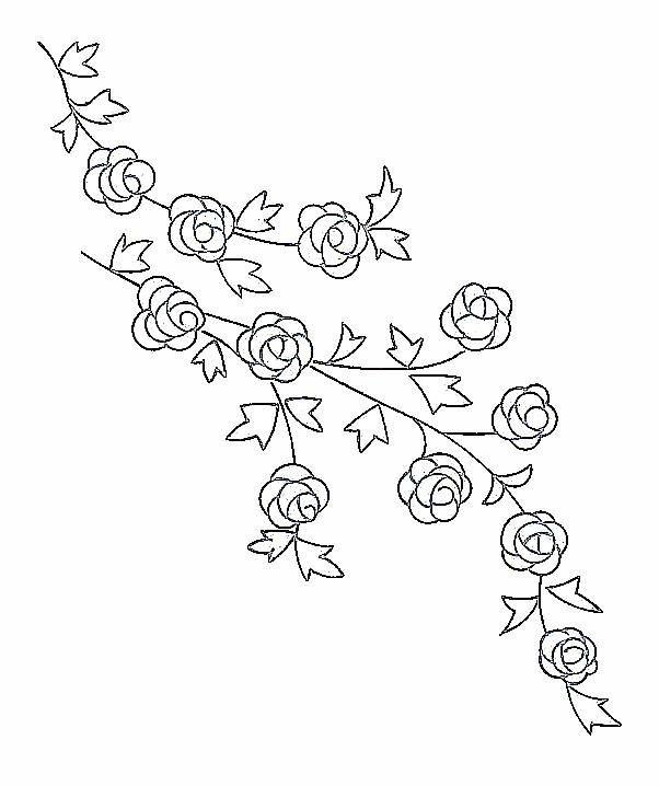 Drawn rose little rose Pinterest et Best on ideas