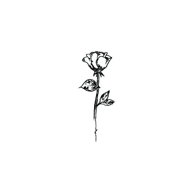 Drawn rose little rose Rose rose Pinterest tattoos ideas