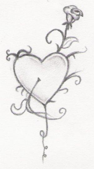 Drawn rose little rose On Rose Rose mistake little