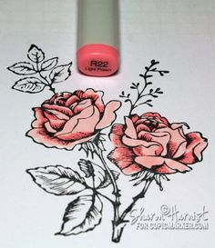 Drawn rose marker  shading Peonies FREE Tutorial
