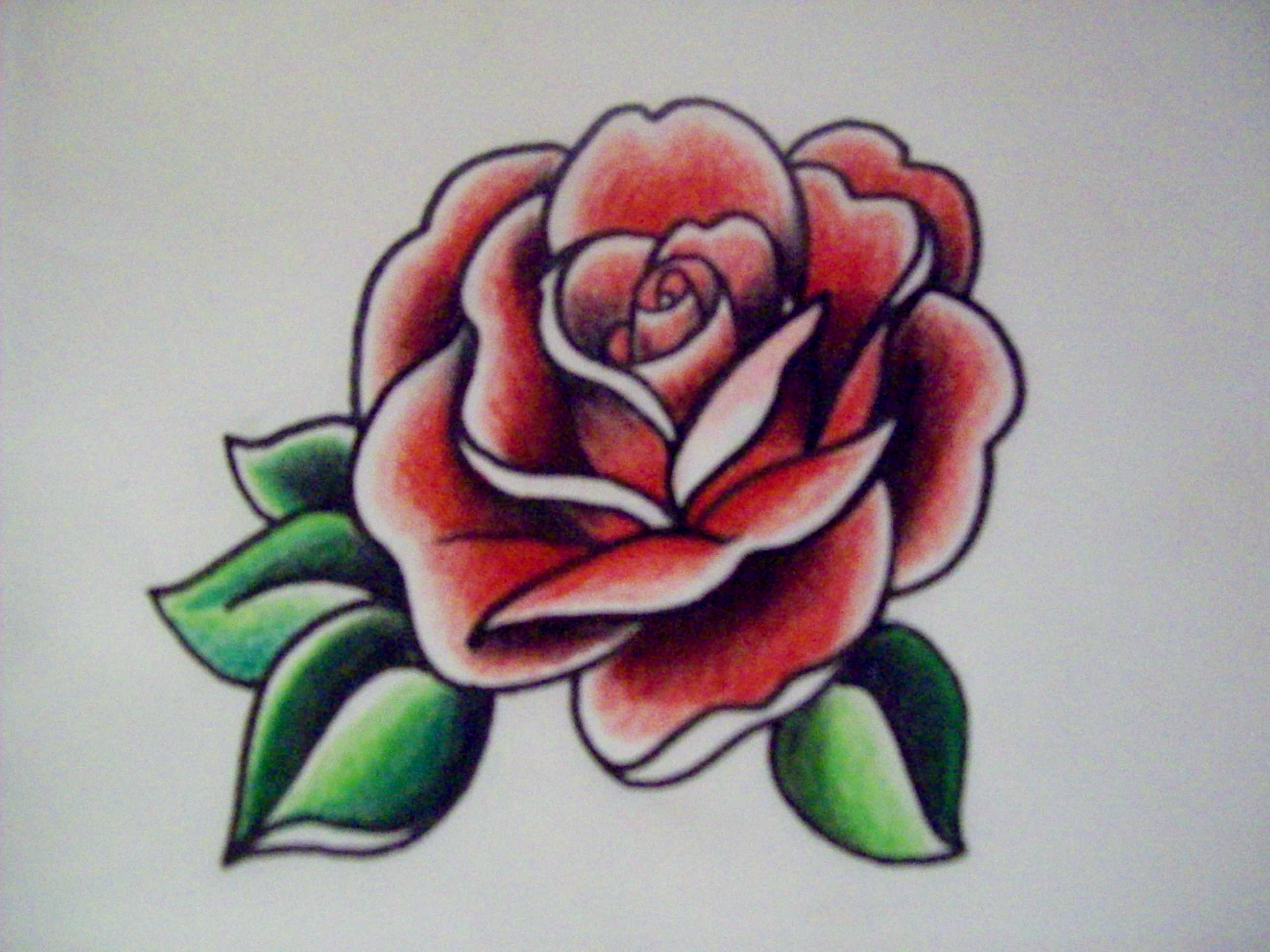 Drawn rose marker Rose Colored images best and