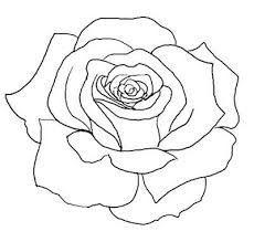 Drawn rose bush simple Tattoo  Tattoo Stick Tattoo