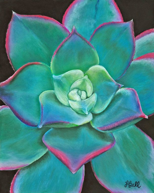 Drawn rose pastel drawing Pastel Striking Pastel Succulent pop