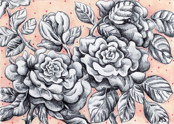 Drawn rose pen and ink Ink DRAWN and Rose Drawing