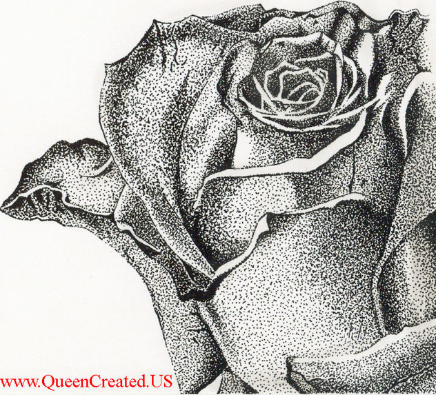 Drawn rose pen and ink Ink Custom and  Stipple