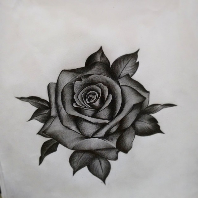 Drawn rose pen drawing On #TagsForLikes #picture #draw draw