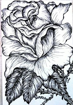 Drawn rose pen drawing Sweet HAND Ink Drawing Valentines