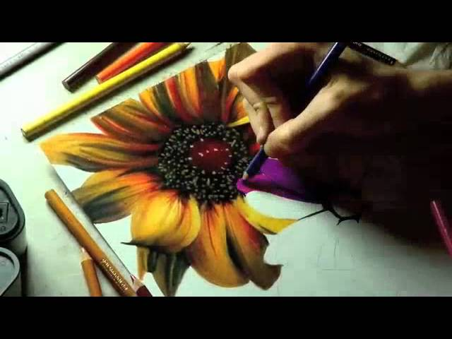 Drawn rose pencil crayon Sun Tutorial Drawings Color Flower