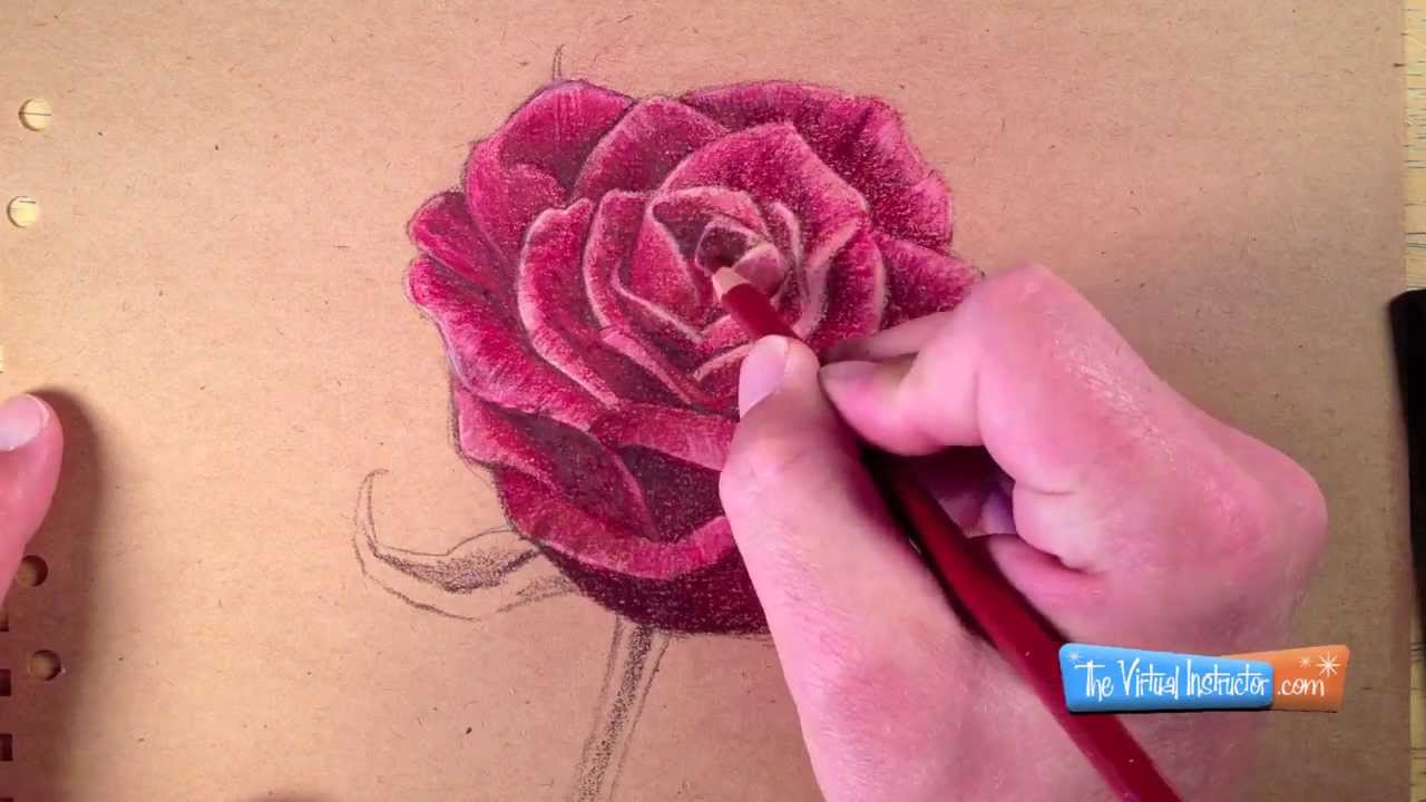 Drawn red rose color Pencils a with YouTube to
