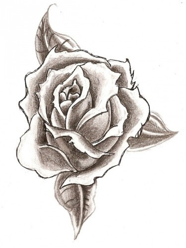 Drawn rose pencil for kid On Easy Pinterest Pencil Drawings