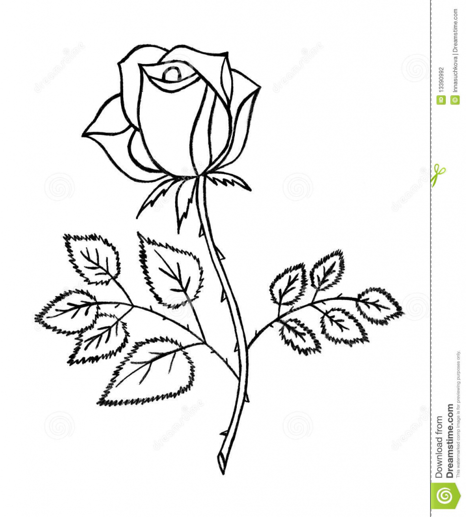 Drawn rose pencil outline Drawing  Pencil Library Draw