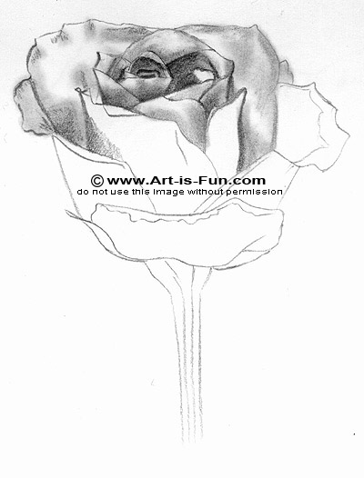 Drawn rose pencil outline Rose: to to to Fun