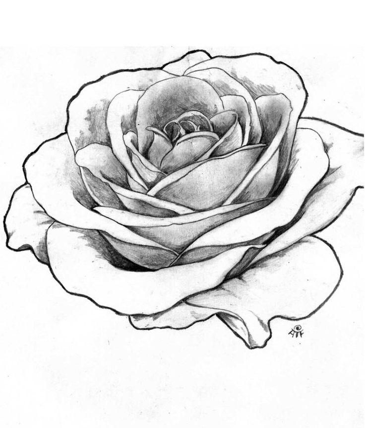 Drawn tattoo rose #8