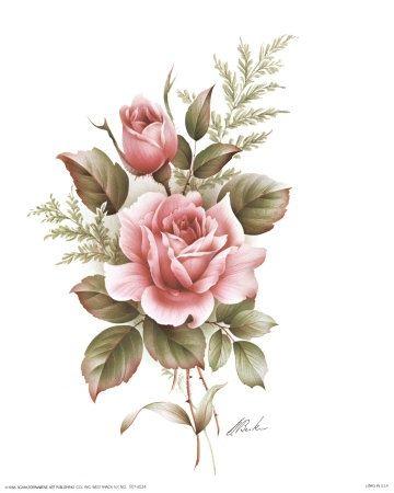 Drawn rose pink rose Really how flower Pinterest on