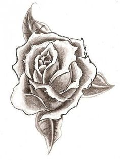 Drawn rose pretty flower Ideas rose drawings Find and
