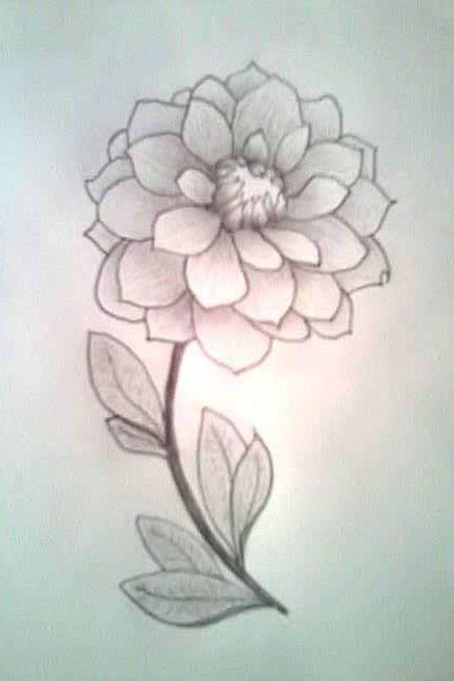 Drawn rose pretty flower 3/4 ideas drawing Cute flower