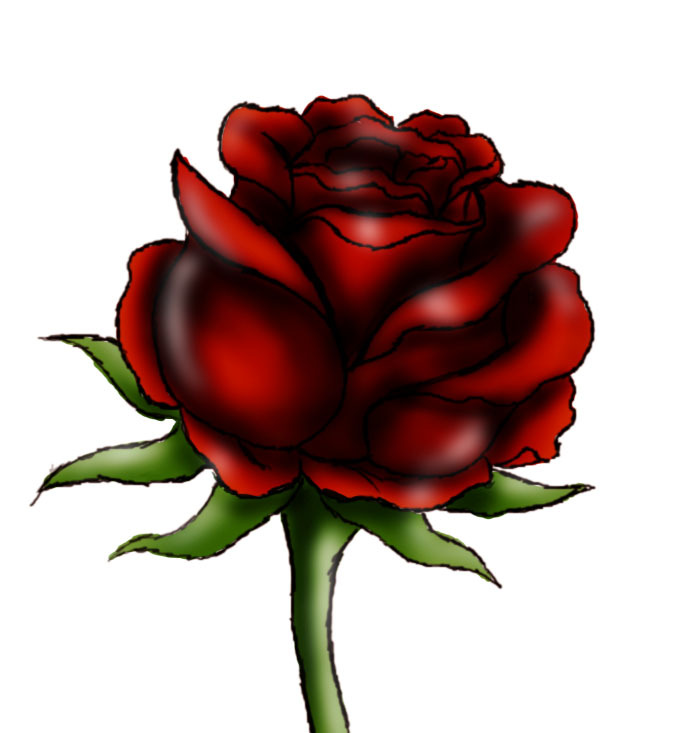 Drawn rose pretty rose To How Steps 9 Rose: