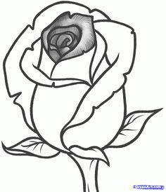 Drawn rose bush rosebud To How Rose Bud to