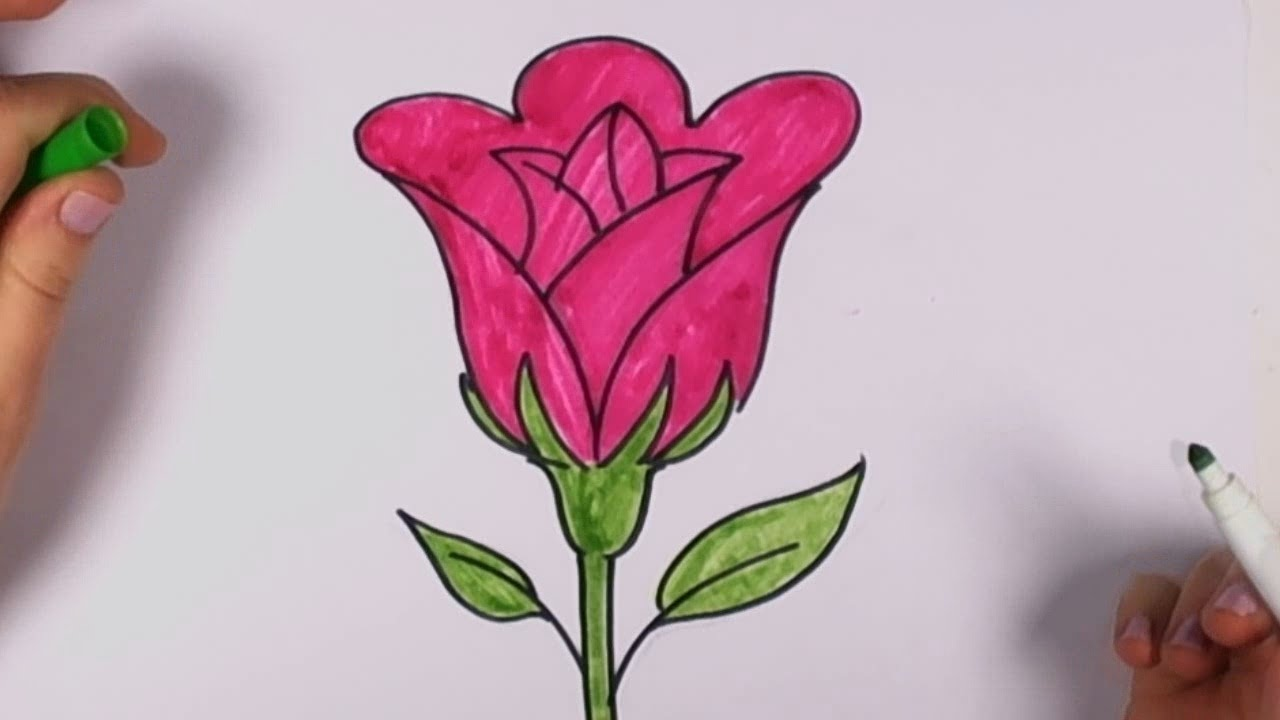 Drawn rose pretty rose YouTube on Drawing Clip Of