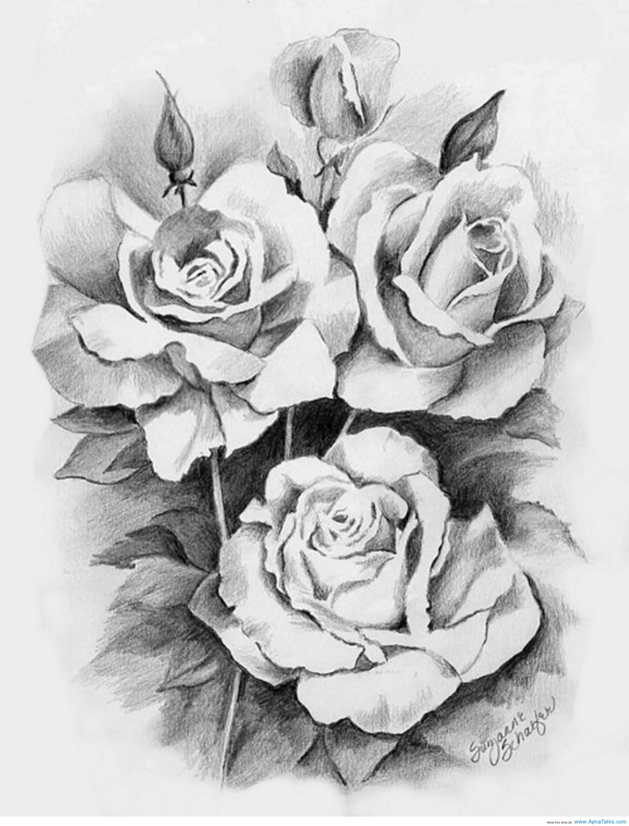Drawn red rose bunch Creative/Artistic Tattoo beautiful draw roses