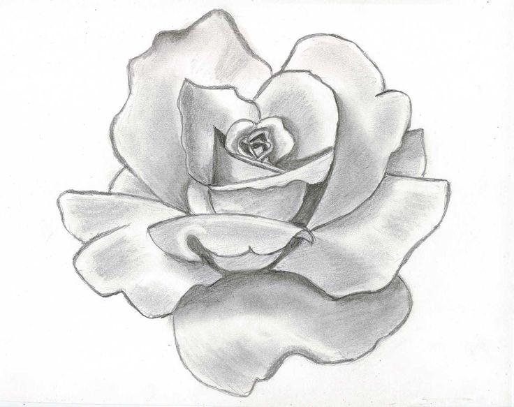 Drawn rose pretty rose ROSES on Pinterest roses beautiful