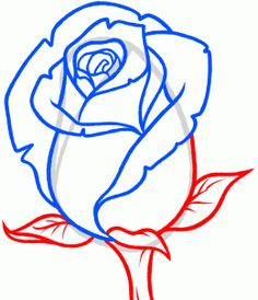 Drawn rose real rose To Real Bud How Step