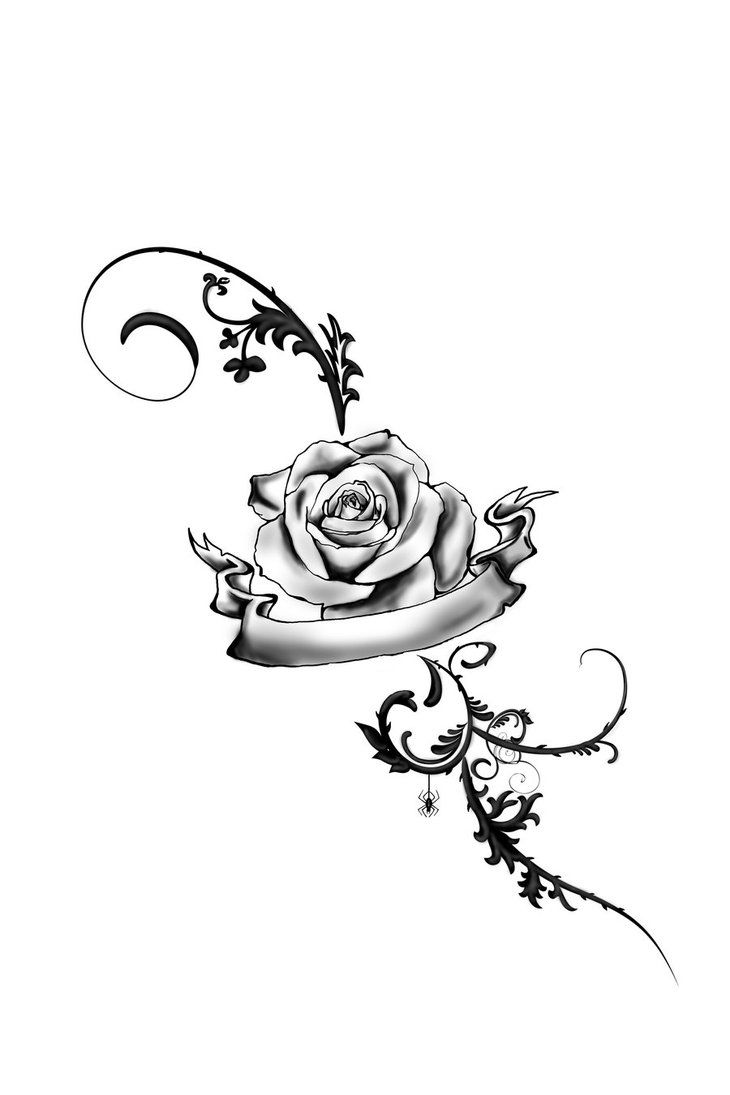 Drawn rose rose banner Best Roses images Pinterest Find