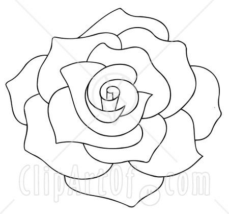 Drawn rose rose bloom On 19150 Bloom Full Black