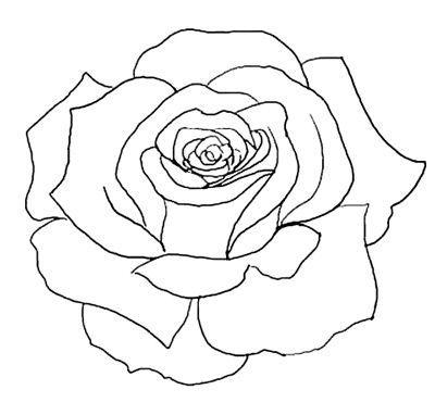 Drawn rose rose bloom Tattoos Rose drawings Pinterest 25+