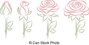 Drawn rose rose bloom Vector illustration free 427 Art