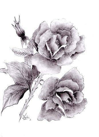 Drawn rose rose bloom Full Bloom Vicki Bloom In