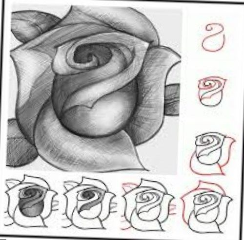 Drawn rose rose blossom Started a would Another NAIJ