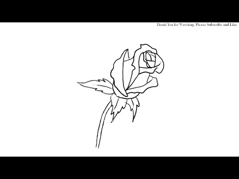 Drawn rose rose bud Simple a How How Bud