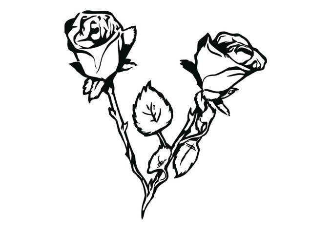 Drawn rose bush leaf Rosebush Rose Decal Rosebush Wall