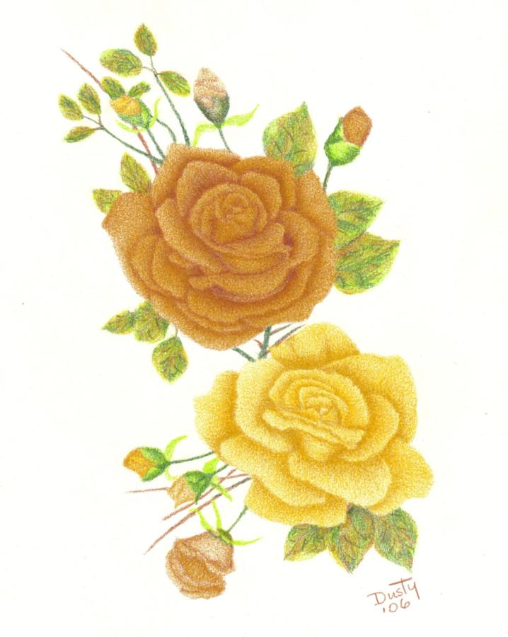 Drawn rose detailed Drawing Cluster by Dusty Reed
