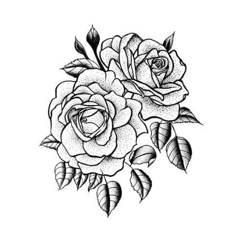 Drawn rose rose cluster And Tattoo Twin Amazon Traditional