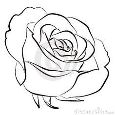 Drawn rose rose line Drawing Step Pin  Step