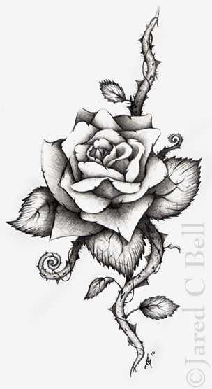 Drawn rose rose thorn  And Designs Drawings Tattoo