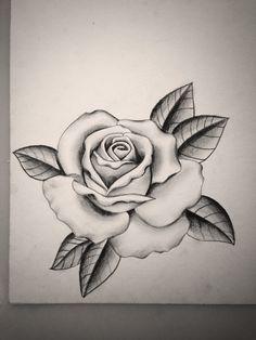 Drawn rose rose tree Pinteres… and We tumblr grey