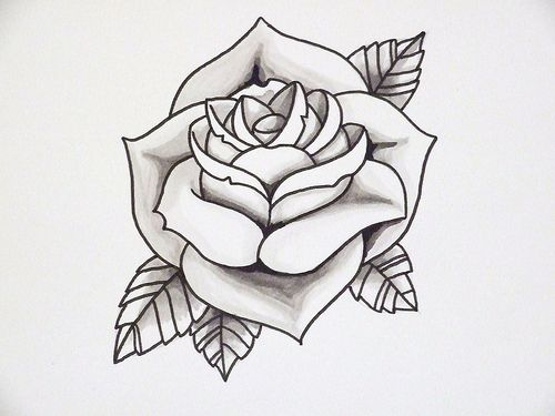 Drawn red rose shaded On Rose Outline Best Shading