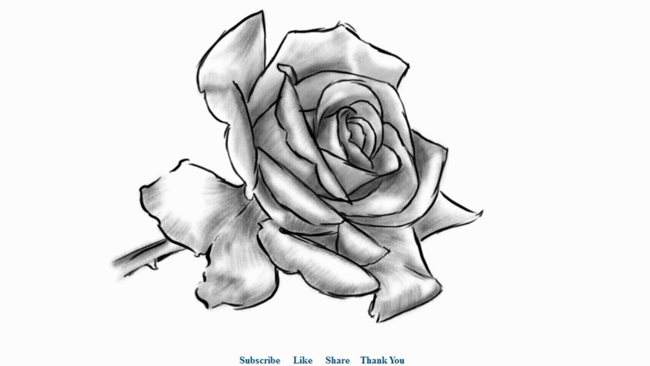 Drawn rose shaded Draw a Beautiful Draw Rose