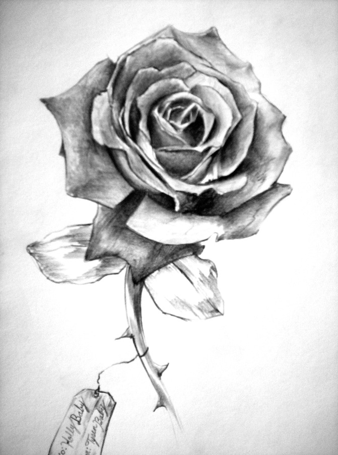 Drawn red rose shaded Is with Pencil order drawing